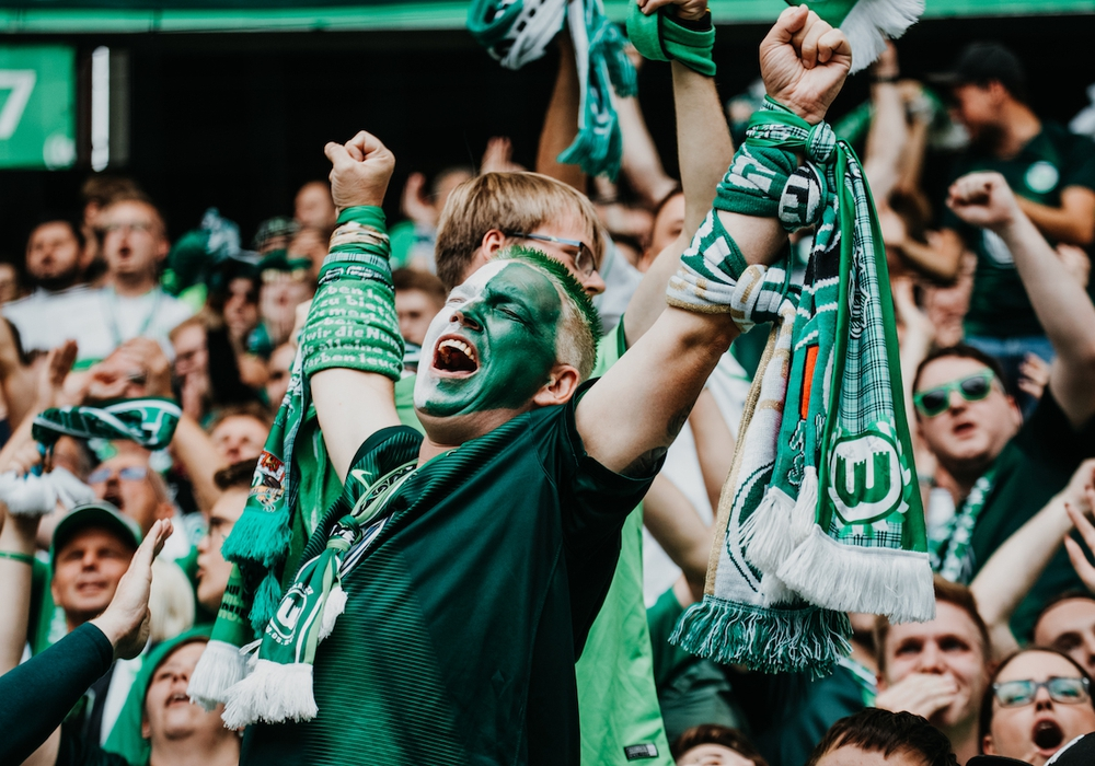 VfL Wolfsburg Fan