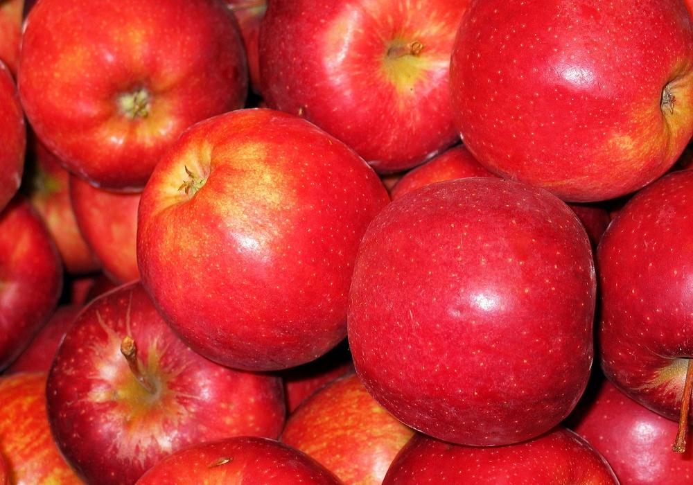 Die Apfelernte steht an beginnt offiziell am 25. August 2018. Foto: Pixabay