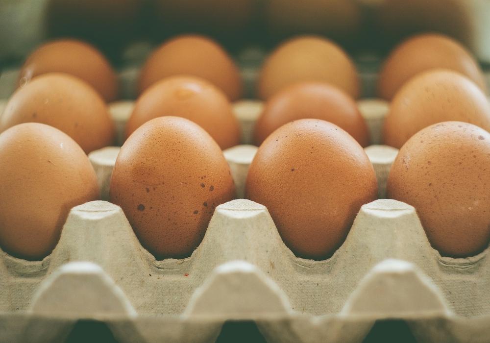 Eier, die bei Netto oder Aldi angeboten wurden, werden zurück gerufen. Foto: Pixabay