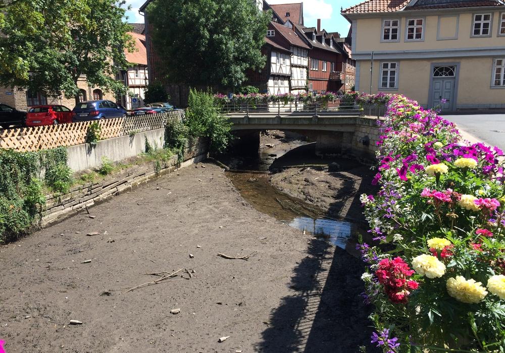 Wolfenbüttel. Im innerstädtischen Okerarm im Bereich der Kommißstraße und Klein Vendig herrscht derzeit Ebbe. Foto: Werner Heise