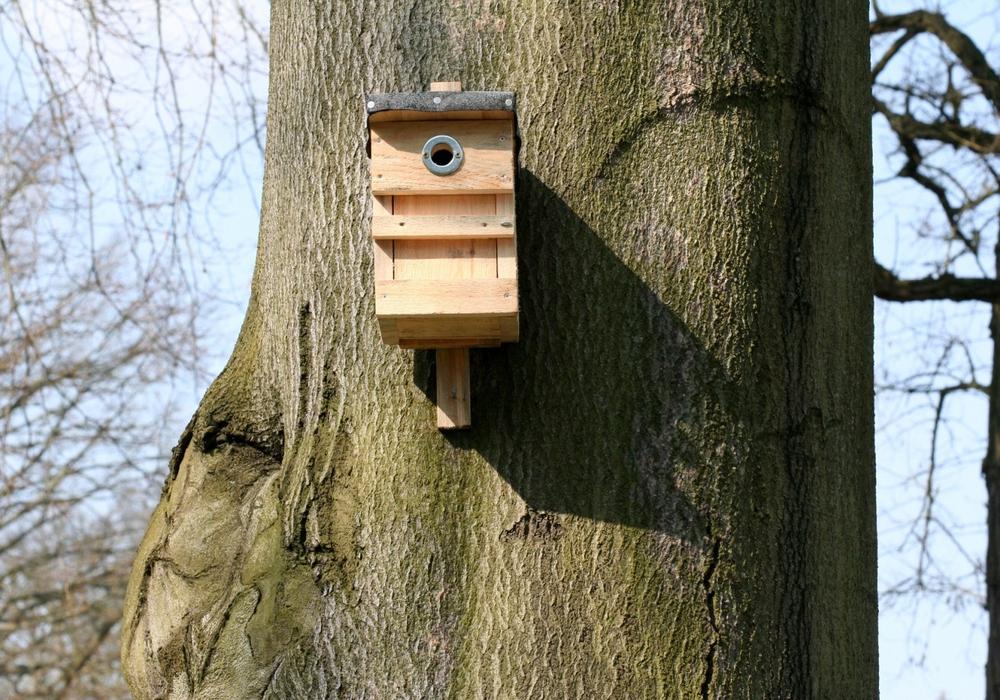 Ein Nistkasten aus Holz kann mit etwas Geschick selbst gebaut werden. Foto: NABU/H. May