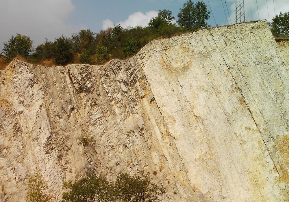 Im Kalksteinbruch in Salzgitter-Salder gibt es einiges zu entdecken. Foto: Stadt Salzgitter