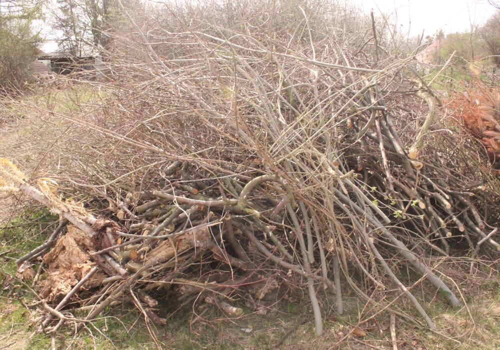 Am 17. November wird in der Gemeinde Schladen-Werla Baumabschnitt abgeholt. Symbolfoto: Anke Donner