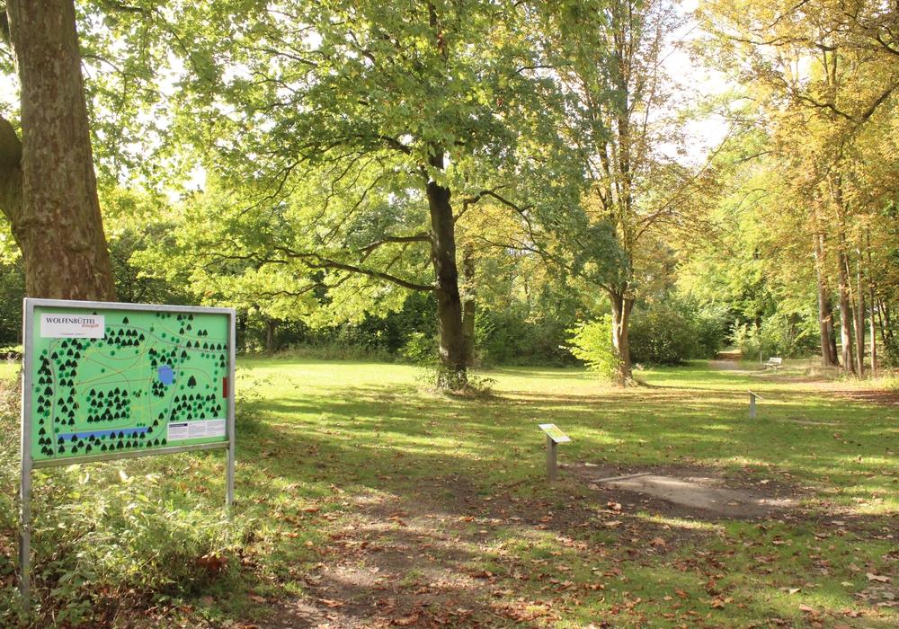 Ortsratmitglied Dr. Dietmar Janke (Grüne) beschwerte sich über den Zustand des Gutsparks in Linden. Foto: Anke Donner