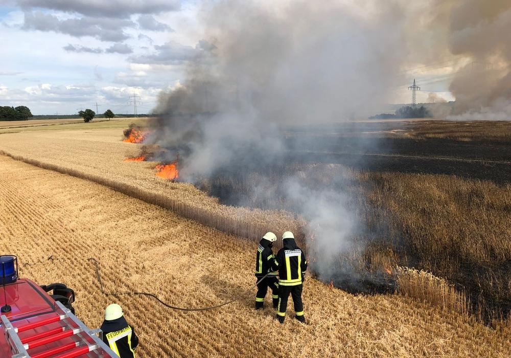 Am Montagabend standen zwischen Klein Brunsrode und Jelpke sieben Hektar Feld in Flammen. Fotos: Presseteam Feuerwehr Gemeinde Lehre