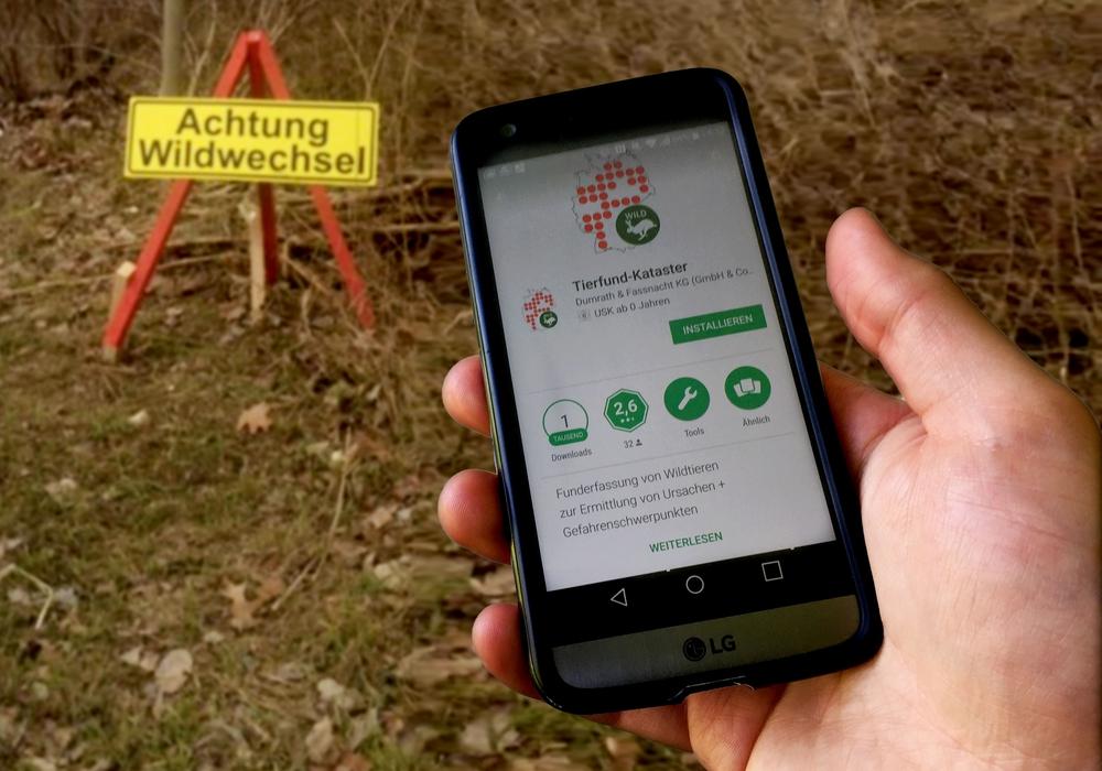 """Die App """"Tierfund-Kataster"""" soll helfen Gefahrenschwerpunkte zu identifizieren. Foto: Alexander Panknin; Polizei Wolfsburg"""