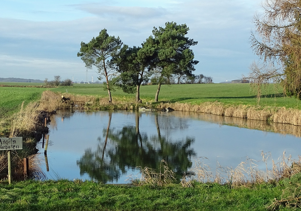 Ein Fischteich neben der B 244 an einem straßenbegleitenden Radweg zwischen Querenhorst und Groß Sisbeck. Der Hintergrund ist durch eine landwirtschaftlich genutzte Fläche geprägt. Foto: Kreisverkehrswacht