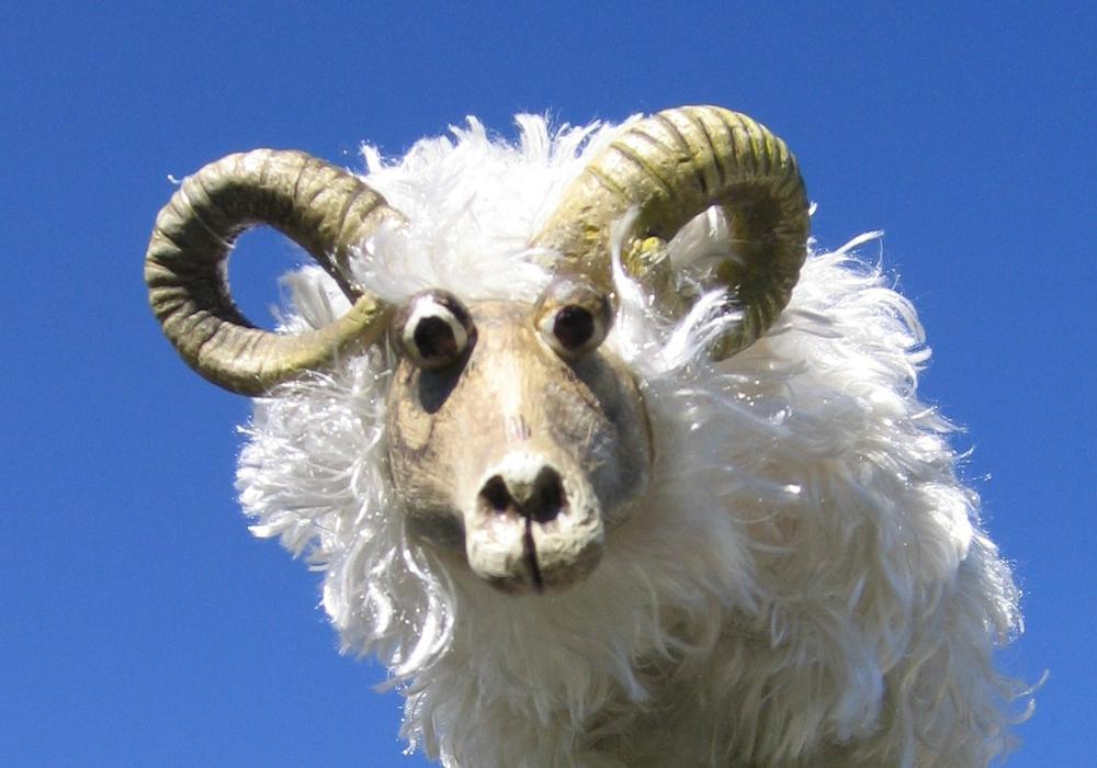 """Das Theater Fadenschein zeigt """"Schwarze Schafe leben besser"""". Passend dazu gibt es an Muttertag echte Schäfchen zu bestaunen. Foto: Theater Fadenschein"""