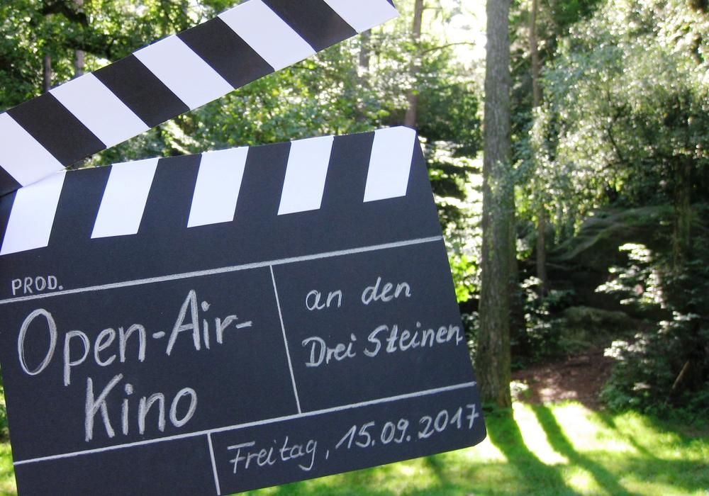 Bis zum 4. September kann abgestimmt werden, welcher Film gezeigt wird. Foto: Stadt Wolfsburg