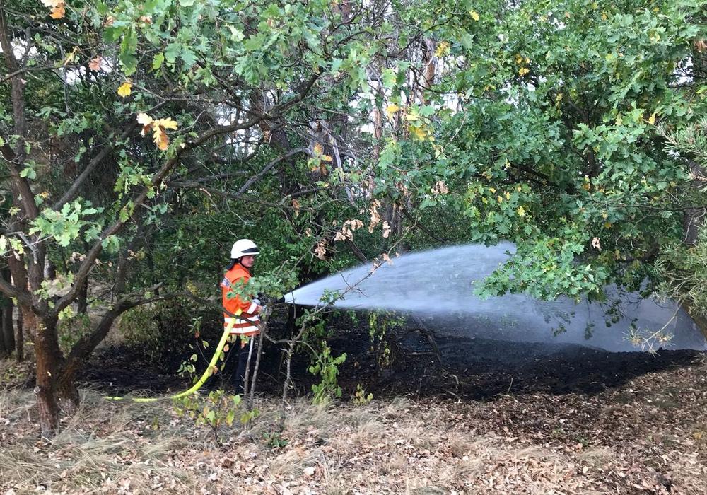 Das Feuer war schnell gelöscht. Fotos: Pressestelle der Freiwilligen Feuerwehr der Samtgemeinde Meinersen / Bußmann