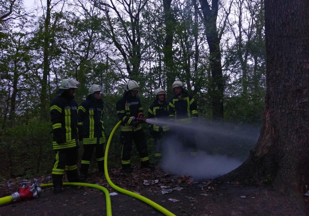 Die Feuerwehr Vorsfelde hatte am gestrigen Abend einen Baumbrand zu bekämpfen. Fotos: Feuerwehr Vorsfelde
