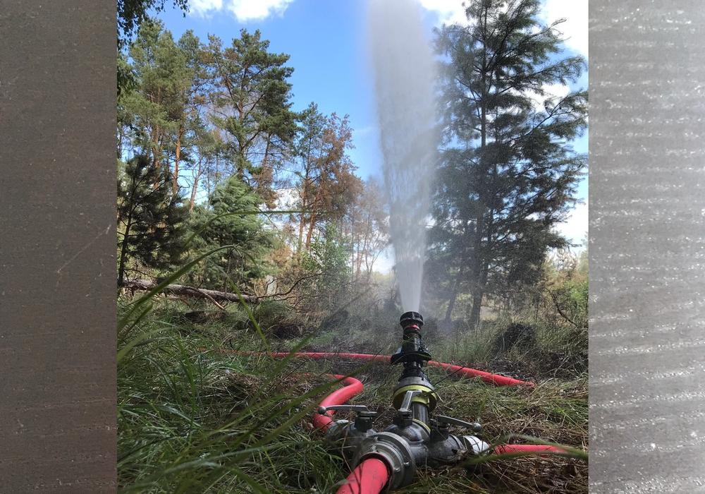 Der Fachzug Wasserförderung der Feuerwehr Braunschweig unterstützte die Hilfskräfte bei der Waldbrandbekämpfung in Brandenburg. Foto: Feuerwehr Braunschweig