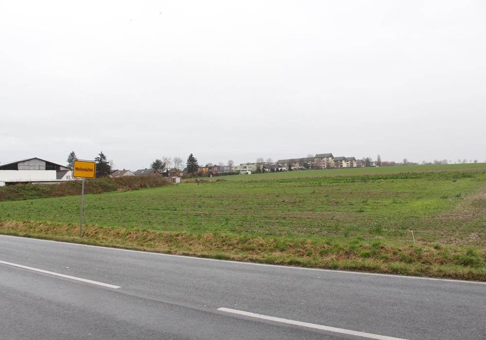 """Hier soll das neue Baugebiet """"Am Södeweg"""" entstehen. Foto: Max Förster/Archiv"""