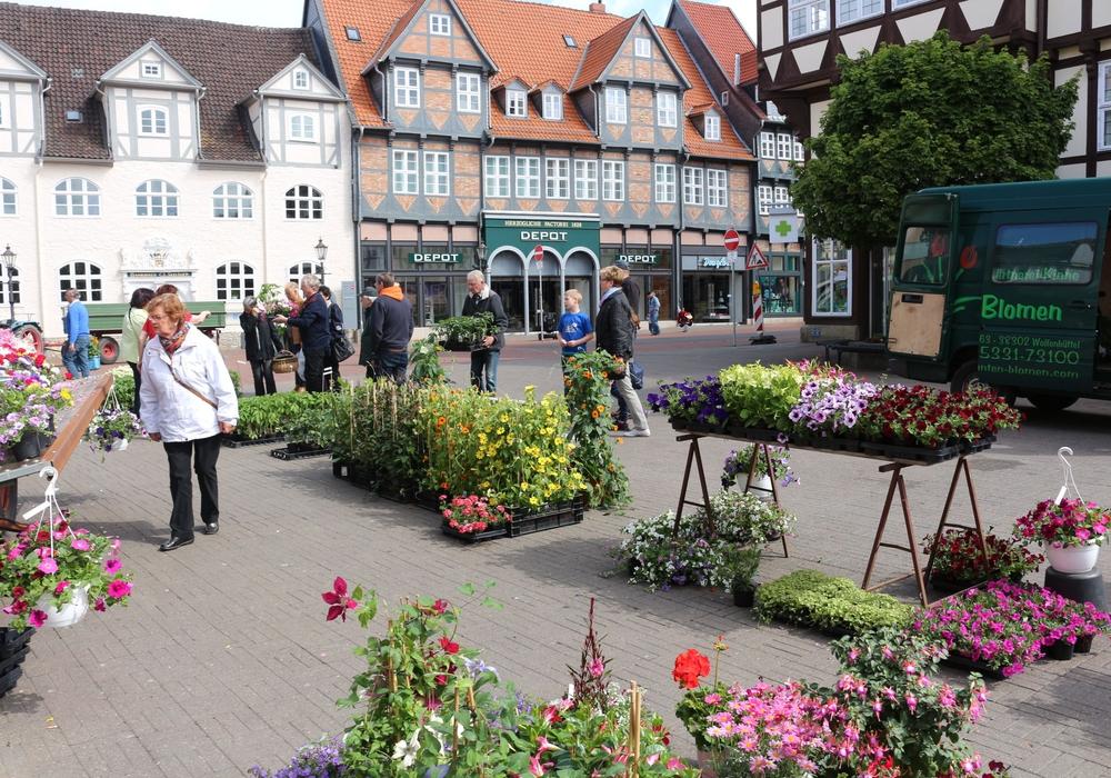 Das Gärtnermuseum ist auch in diesem Jahr auf dem Geranienmarkt vertreten. Foto: Archiv