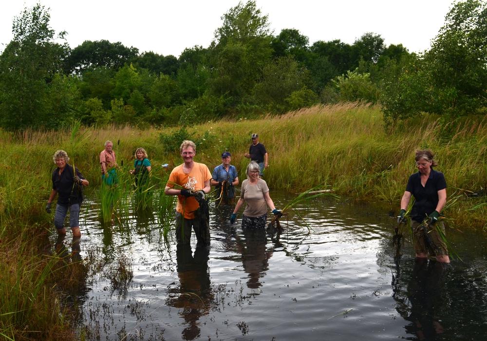 Die NABU-Kreisgruppe Wolfenbüttel bei ihrem Einsatz zum Schutz bedrohter Amphibien. Foto: Alexander Onkes