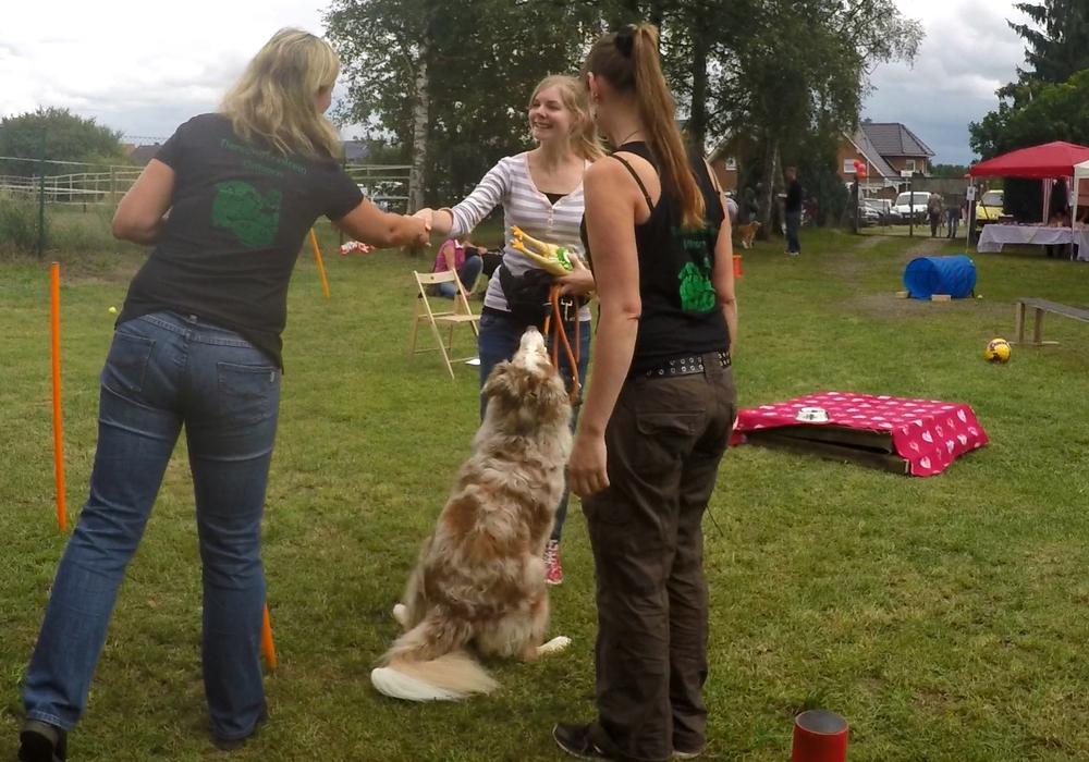 Auch in den vergangenen Jahren fand im Tierschutzverein ein Sommerfest statt. Fotos: Tierschutzverein Gifhorn und Umgebung e.V.
