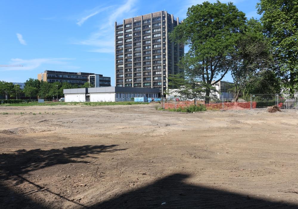 Etwa 150 neue Wohnungen sollen in den kommenden fünf Jahren auf dem Areal des ehemaligen Klinikstandortes an der Gliesmaroder Straße entstehen. Die alten Gebäude wurden bereits abgerissen, Foto: Robert Braumann