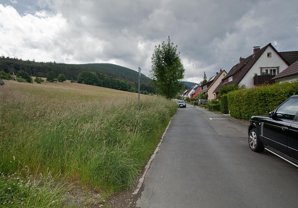 Der Karsten-Balder-Stieg aus Richtung der Straße Bleicheweg gesehen. Foto: Alec Pein