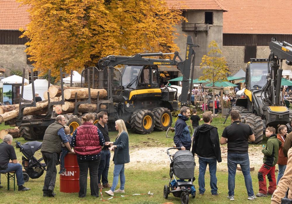 Der Holzmarkt hatte für alle etwas zu bieten. Fotos: Rudolf Karliczek