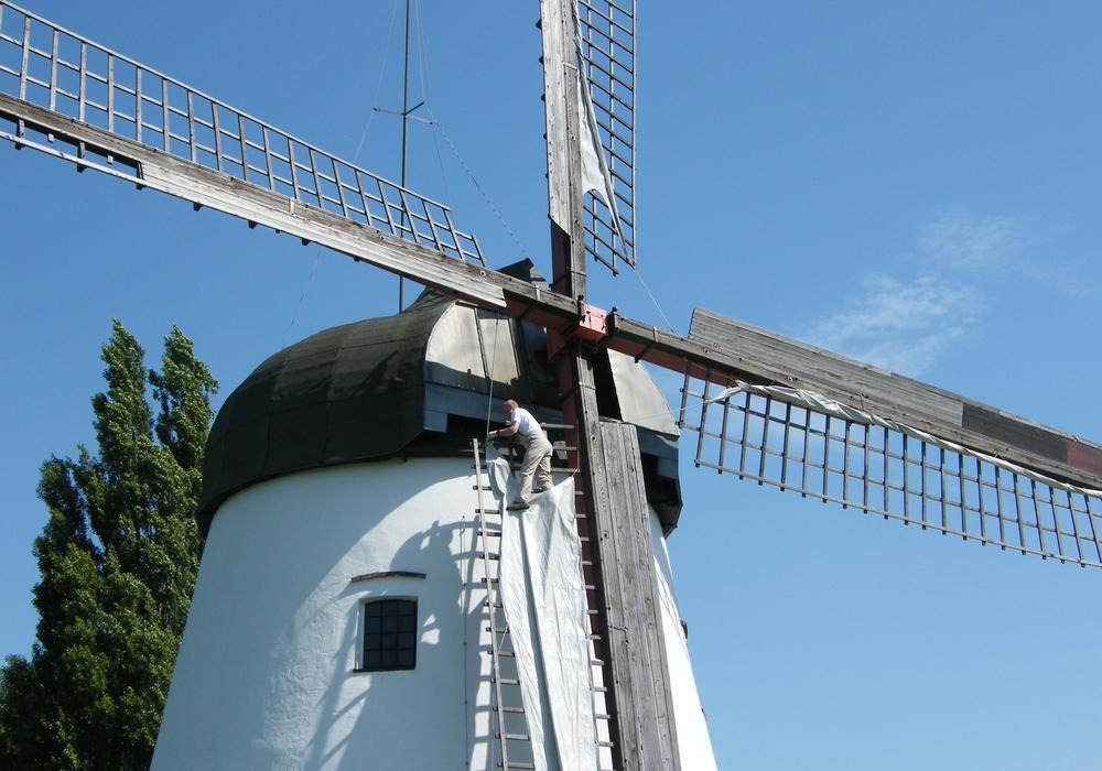 Dieses Jahr auch wieder mit dabei: Windmühle am Bungenstedter Turm in Halchter. Symbolfoto: Anke Donner