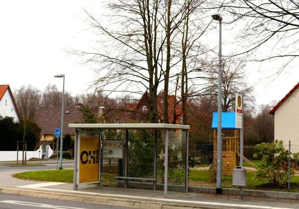 Aufgrund der Asphaltierungsarbeiten am Neuen Weg kommt es zu veränderten Linienwegen der Busse. Manche Bushaltestellen werden leer bleiben. Foto: Sina Rühland