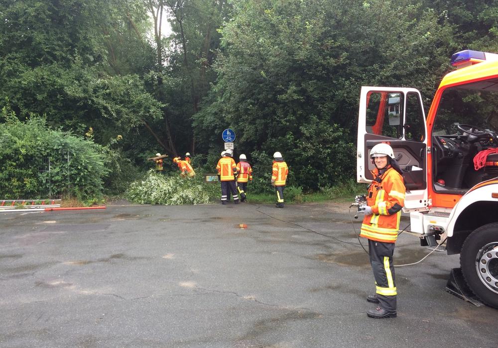 Die Feuerwehr musste große Teile des Baums entfernen. Fotos: Feuerwehr Braunschweig