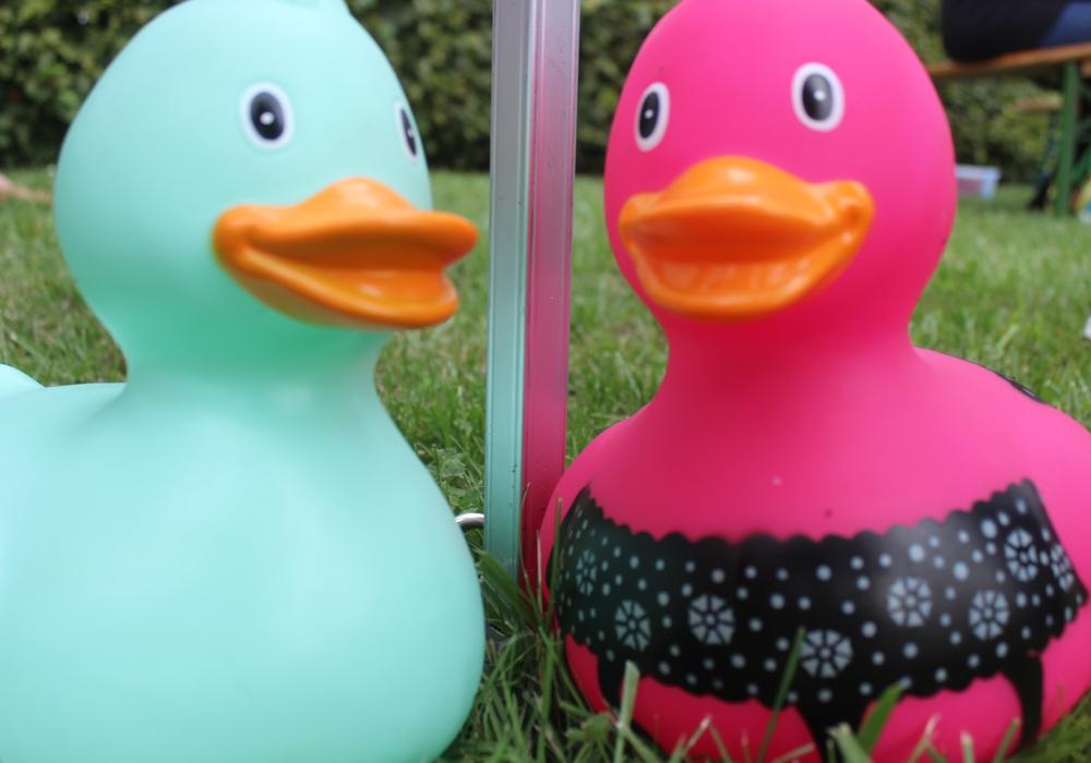 Am 21. August findet das 12. Entenrennen der CDU Sickte statt. Symbolfoto: Anke Donner