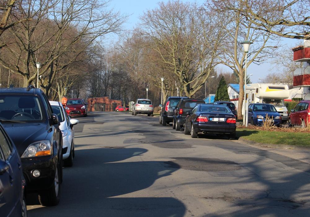Parknot an der Ernst-Moritz-Arndt-Straße. Foto: Max Förster