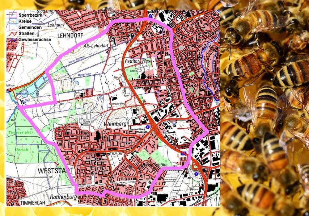 Auf der Karte ist der Sperrbezirk in lila hervorgehoben. Foto: Pixabay/Stadt Braunschweig