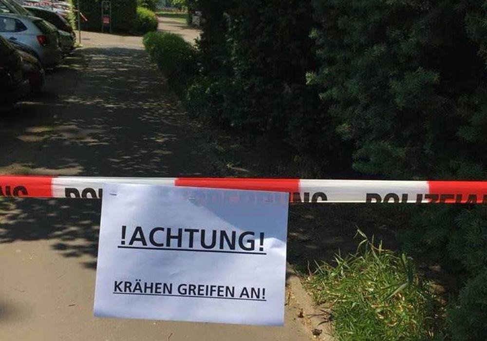 Ein kleiner Bereich des Kiryat-Tivon-Parks musste vorübergehend gesperrt werden. Foto: Polizei Braunschweig