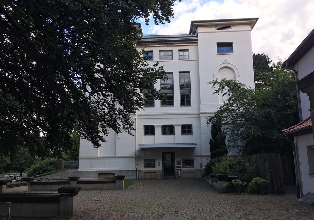 Mit einem offenen Brief wendet sich die  Bürgerinitiative Baumschutz Braunschweig an das Georg-Eckert-Institut. Foto: Alexander Dontscheff