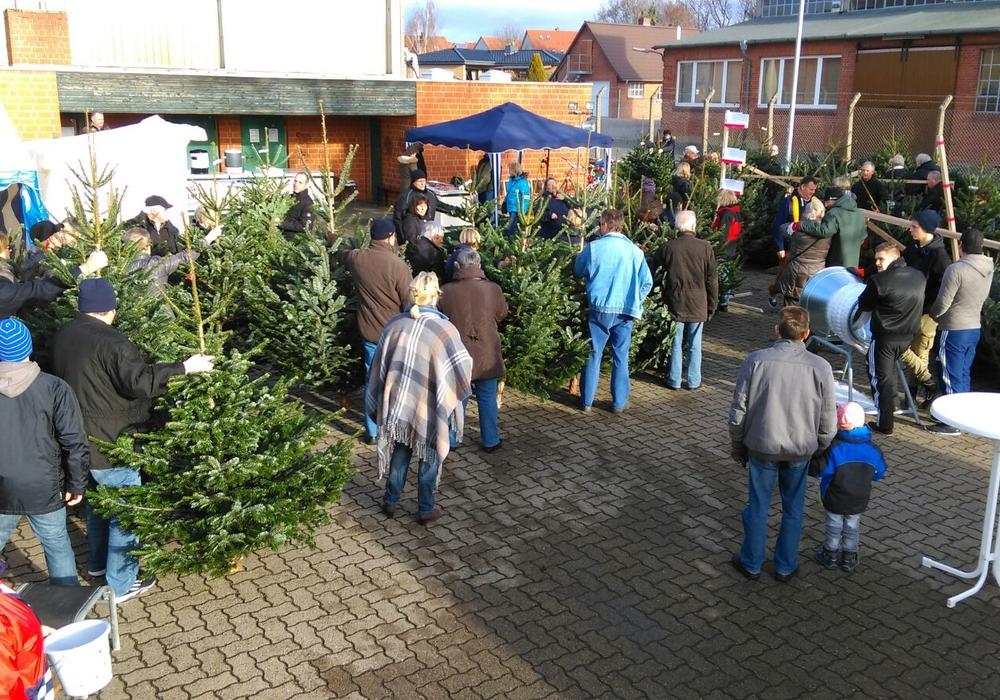 Der Weihnachtsmarkt Denkte findet zum fünften Mal statt. Foto: Förderverein Freibad Groß Denkte