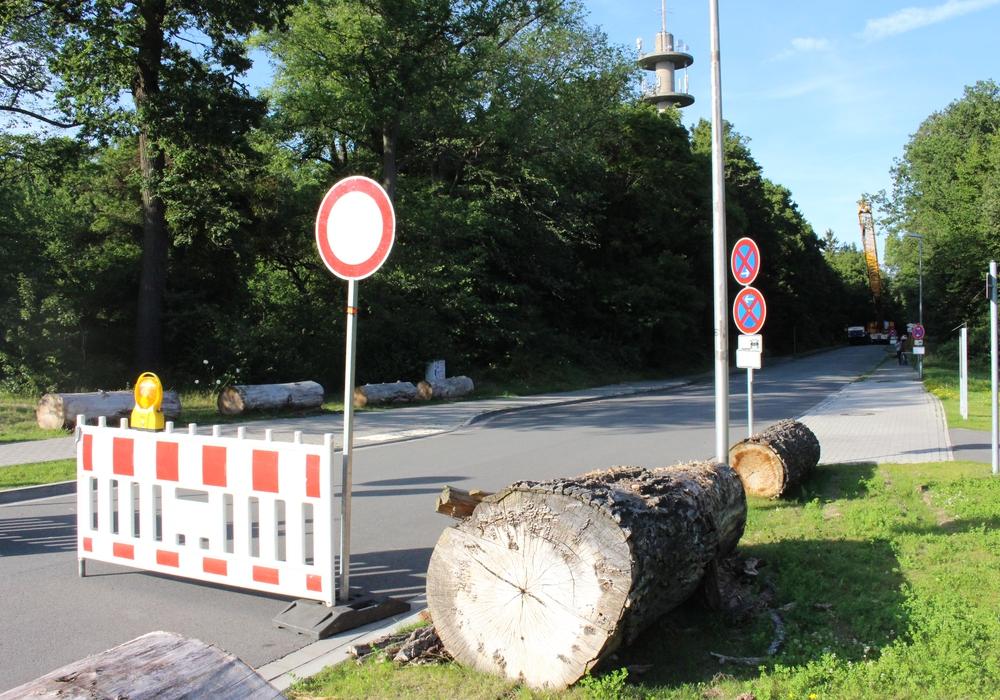 Die Sperrung der Sauerbruchstraße sorgte für Ärger. Fotos: Eva Sorembik