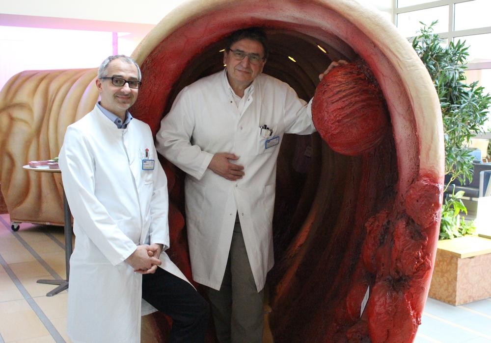 Professor Dr. Kinan Rifai (links) und Professor Dr. Heinrich Keck präsentieren das Darmmodell. Fotos/Video: Max Förster