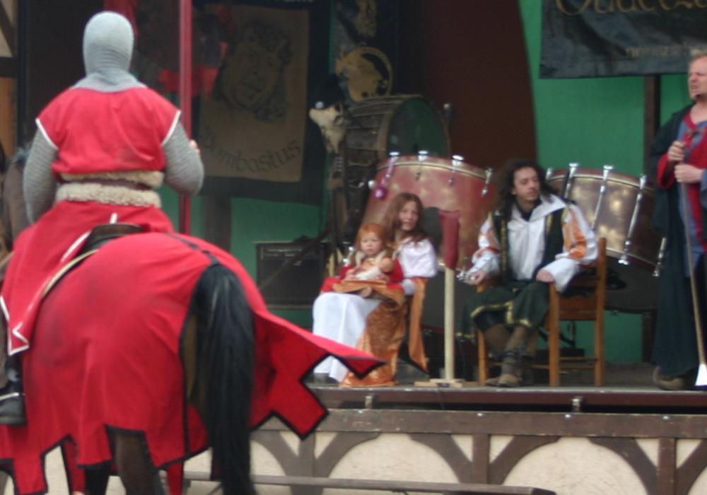 Für den ersten Mittelalterspektakel im Kennelbad Braunschweig am 14. und 15. Oktober wird noch eine Königsfamilie zum Großen Ritterturnier gesucht. Fotos: Lutz Lehmann