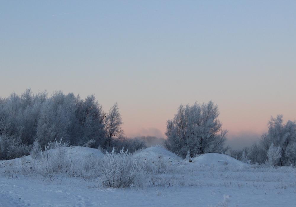 Der Winter hat auch schöne Seiten. Wir zeigen sie in unserer Foto-Strecke: Fotos: Anke Donner/Alec Pein/Privat