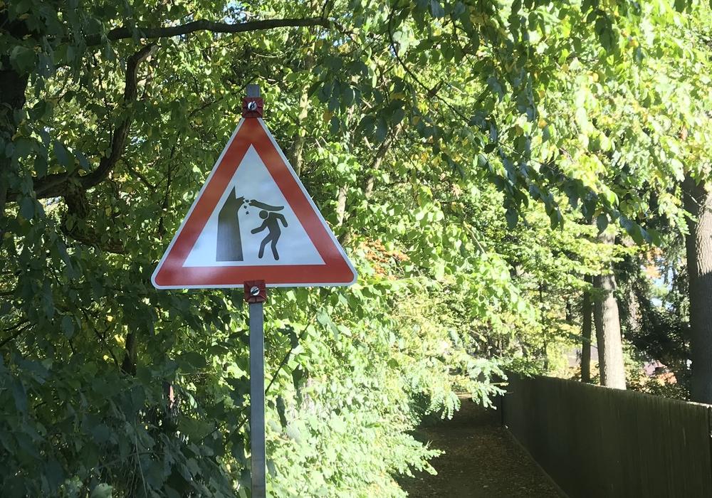 Derzeit wird davor gewarnt, in den Wald zu gehen. Symbolfoto: Sandra Zecchino