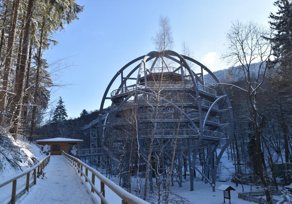 Der Baumwipfelpfad wird auch im Winter passiert werden können. Bildmaterial: Harz Venture GmbH