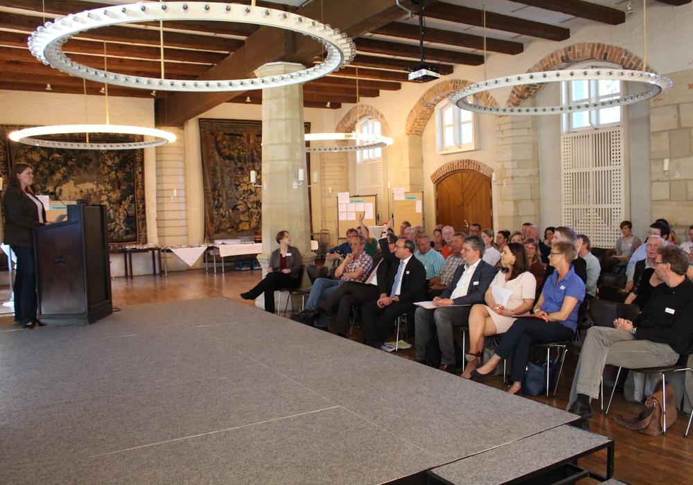 Im Rittersaal des Schlosses Gifhorn diskutierten die Mitglieder der ILE-Region Südkreis Gifhorn über mögliche neue Projekte. Foto: Julian Bergmeier