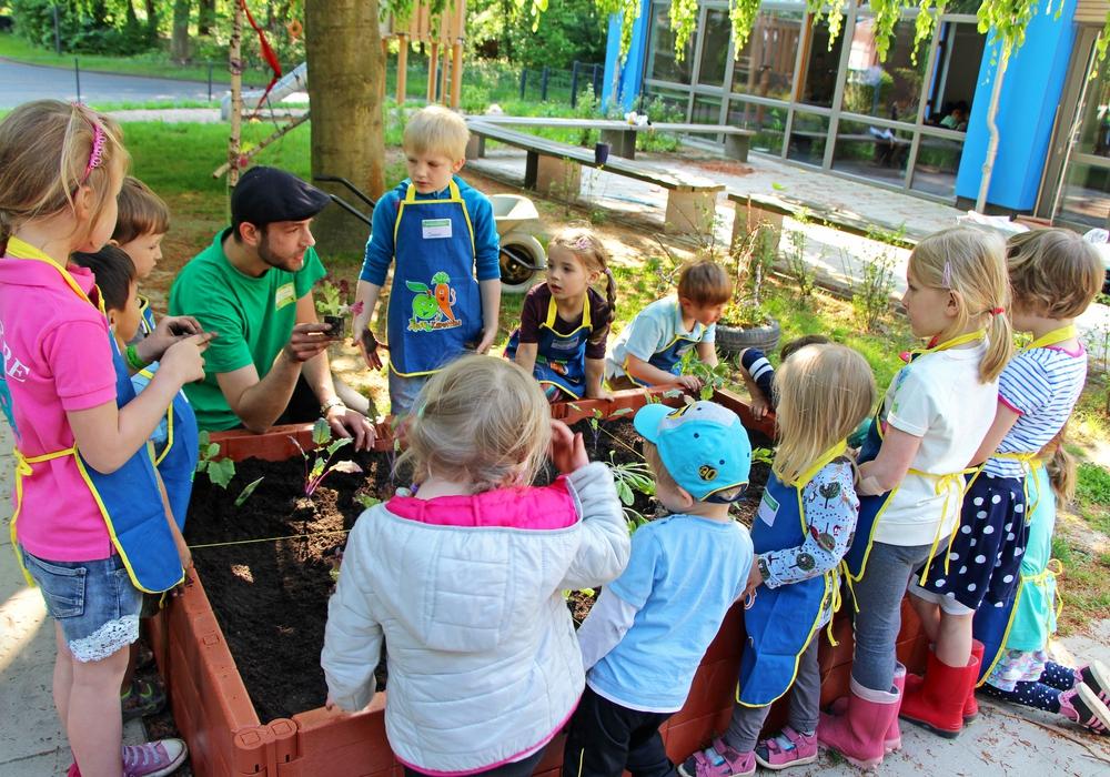"""Kinder der Johanniter-Kita """"Die kleinen Murmeltiere"""" haben von der EDEKA-Stiftung ein Gemüse-Hochbeet bekommen. Foto: Natalia Shapovalova / Johanniter."""