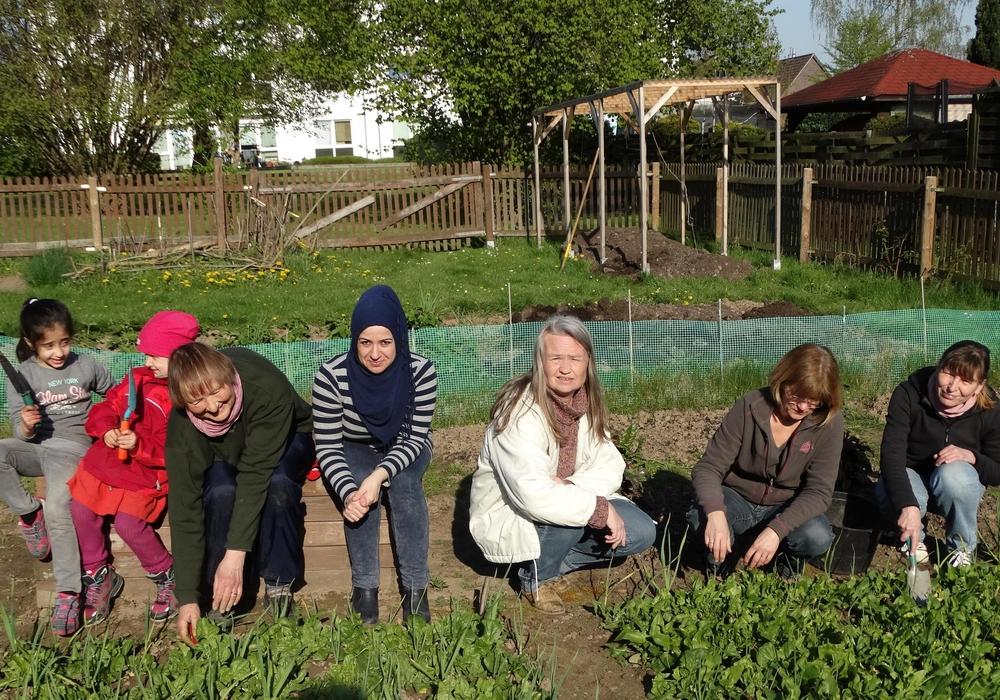In dieser Woche konnte auch schon der erste Spinat geerntet werden. Foto: Andreas Riekeberg