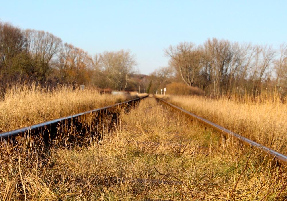 Kaum gestartet, da verschlankt Locomore schon den Fahrplan. Symbolfoto: Sina Rühland