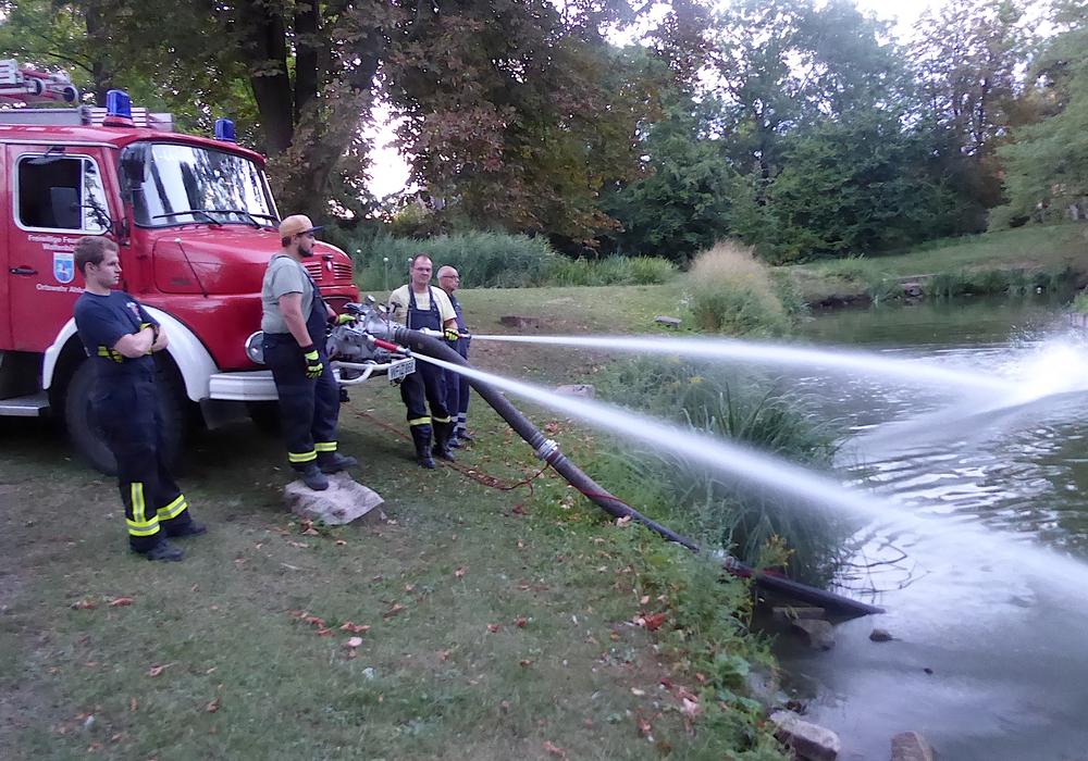 Das Wasser im Teich wurde mit Sauerstoff angereichert. Foto: Siegfried Hauptstein