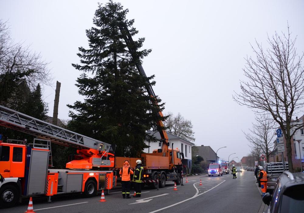 Weihnachtsbäume wurden im Stadtgebiet aufgestellt. Foto: Ortsfeuerwehr Fallersleben