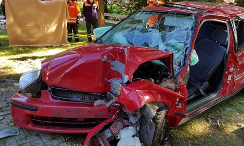 Ein Notarzt und die Teams zweier Rettungswagen konnten dem Fahrer nicht mehr helfen.