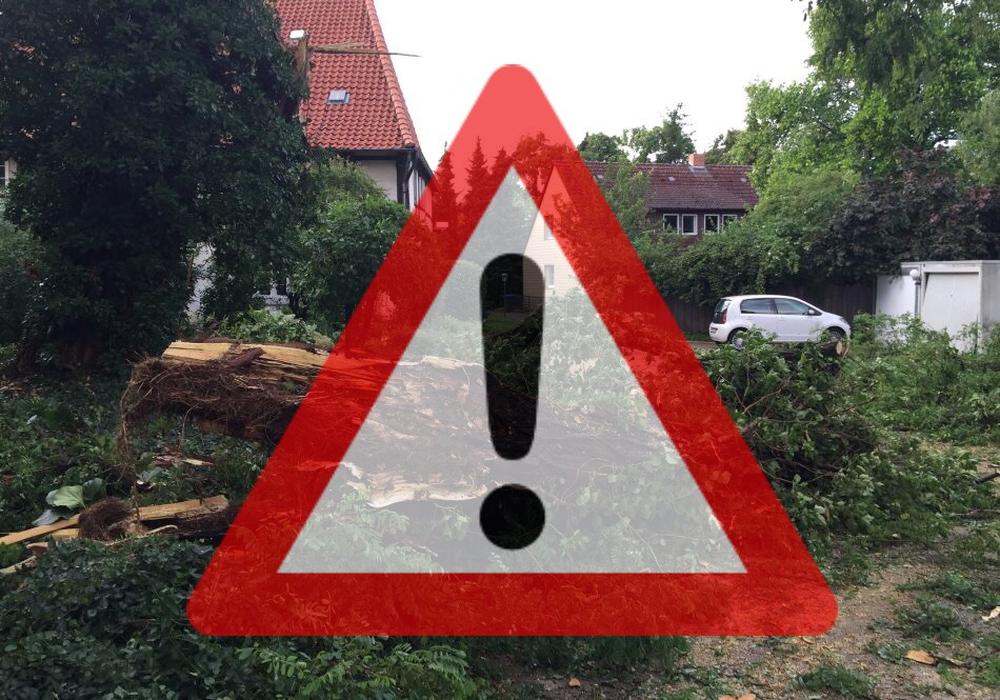 Auch im Landkreis Helmstedt ist die Feuerwehr wegen umgeknickter Bäume im Einsatz. Symbolbild: Nick Wenkel