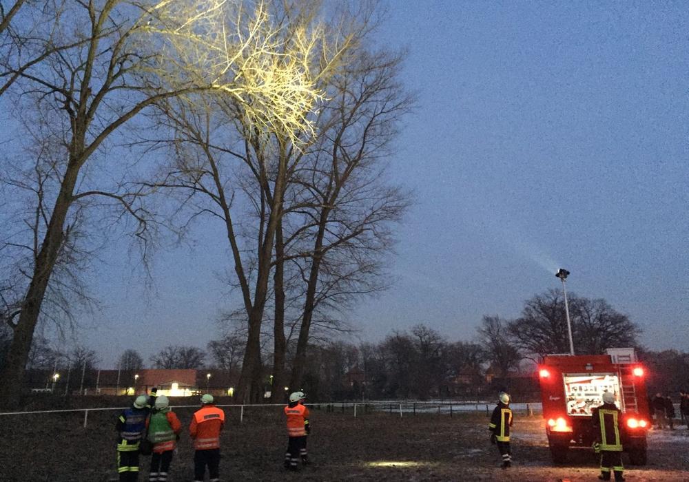 Die Feuerwehr im Einsatz - Zur Tierrettung wird der Baum ausgeleuchtet. Foto: Freiwillige Feuerwehr Müden/ Dieckhorst, Timm Bussmann