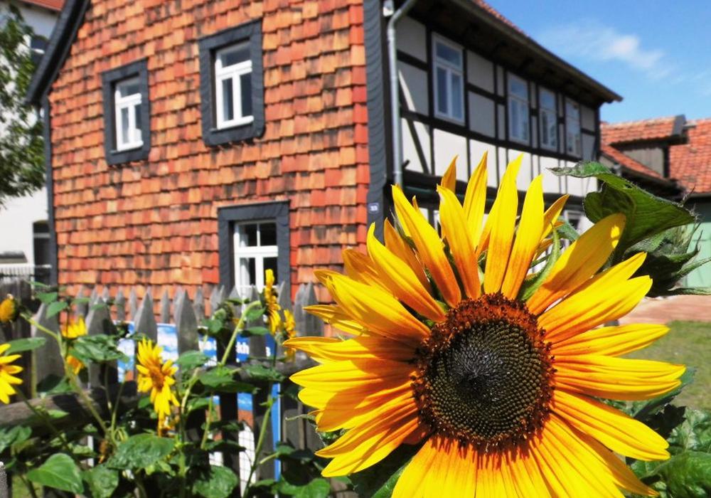Das Gärtnermuseum, Neuer Weg 33, hat am Samstag, 27. August, von 14 bis 18 Uhr geöffnet. Foto: Privat