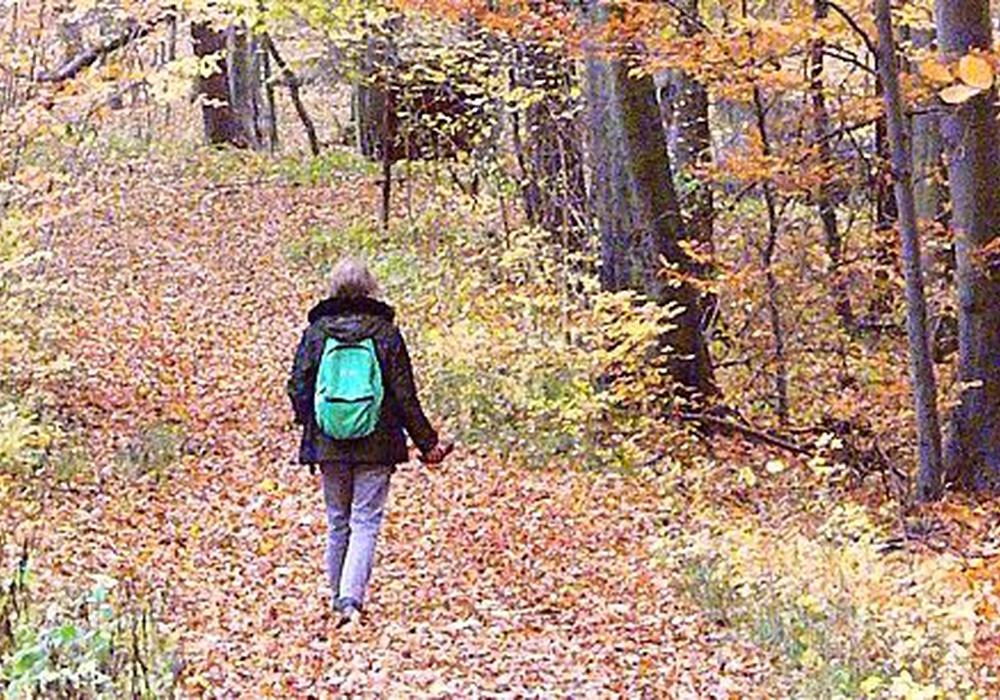 Wanderung bei wunderschöner Herbstlaubfärbung. Foto: NABU/C.Fuchs