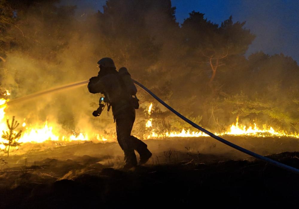 Bei sengender Hitze kämpften die Kameraden an der Feuerfront. Foto: Feuerwehr Helmstedt